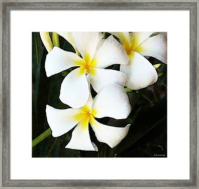 Tropical Life - Flower Painting Framed Print by Sharon Cummings