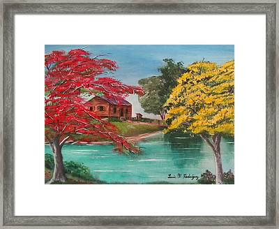 Tropical Lifestyle Framed Print