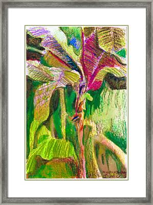 Tropical Light Framed Print