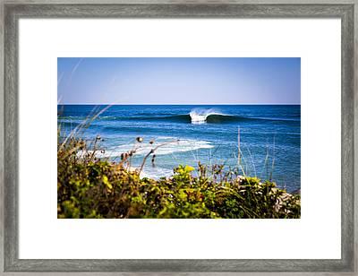 Tropical Montauk Framed Print