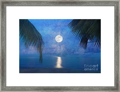 Tropical Moonglow Framed Print by Betty LaRue