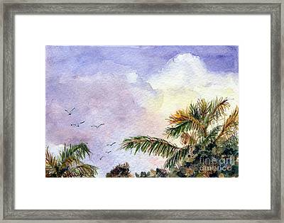 Tropical Morning Framed Print
