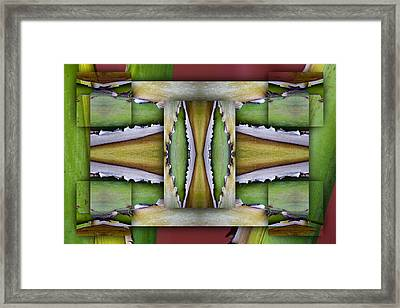 Tropical One Framed Print