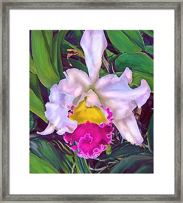 Tropical Orchid Framed Print