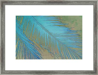 Tropical Palm In Blue Framed Print