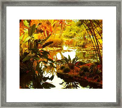Tropical Paradise Framed Print by Amy Vangsgard