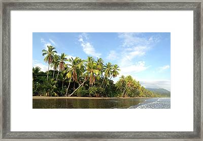 Tropical Paradise Framed Print by Tropigallery -