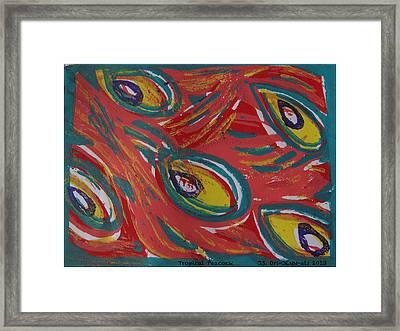 Tropical Peacock Framed Print by Jennifer Schwab