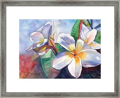 Tropical Plumeria Flowers Framed Print