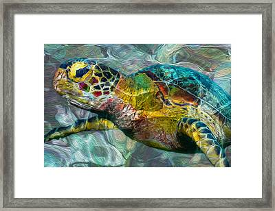 Tropical Sea Turtle Framed Print