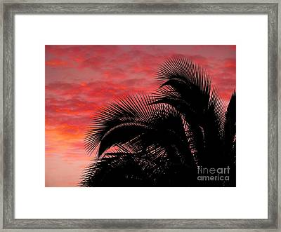 Tropical Silhouette Framed Print