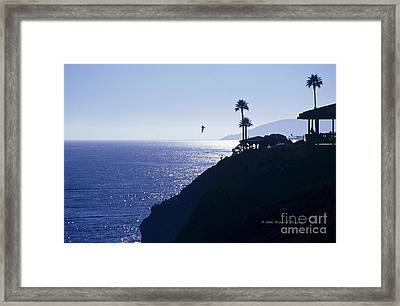 Tropical Silhouette Framed Print