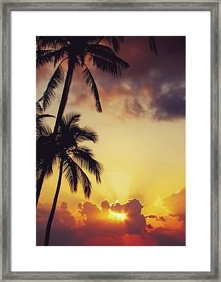 Tropical Sunset Framed Print by Jenny Rainbow