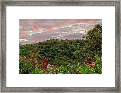 Framed Print featuring the photograph Tropical Sunset Landscape by Peggy Collins