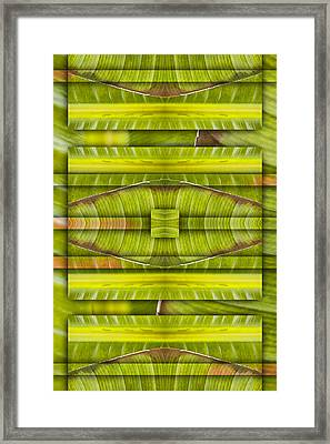 Tropical Three Framed Print