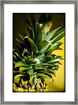 Tropical Top Framed Print by Christi Kraft