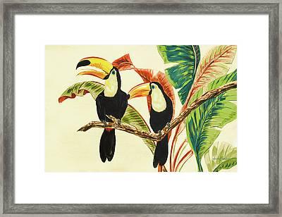 Tropical Toucans I Framed Print