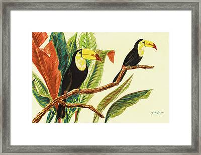 Tropical Toucans II Framed Print