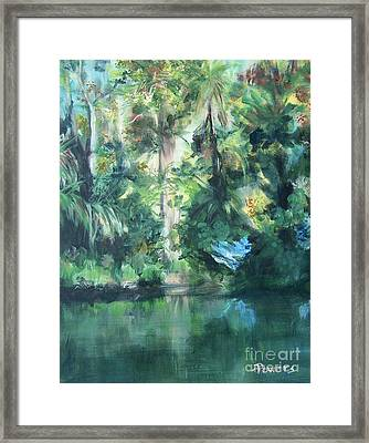 Tropical Treasure Framed Print by Mary Lynne Powers