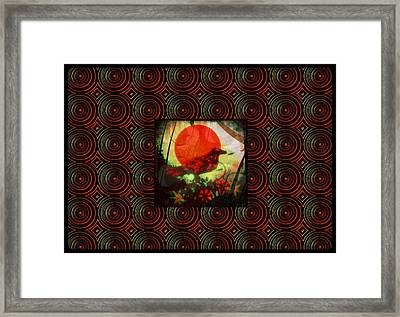 A Bright Hope Framed Print by Sherry Flaker