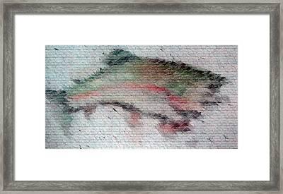 Trout 2 Framed Print by Ayasha Loya