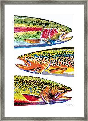 Trout Abstraction Framed Print by JQ Licensing