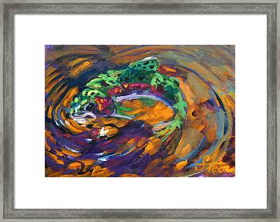 Trout And Fly Framed Print by Savlen Art