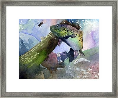 Trout And Fly Framed Print