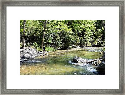 Trout Fishing Framed Print by Susan Leggett