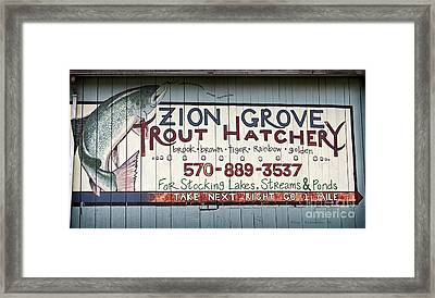 Trout Hatchery Framed Print by John Stephens