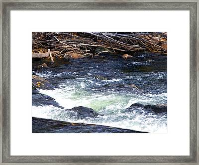 Framed Print featuring the photograph Trout River by Jackie Carpenter
