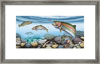 Trout Stream Framed Print by JQ Licensing