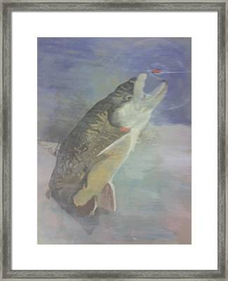 Trout To Fly Framed Print by Stephen Thomson