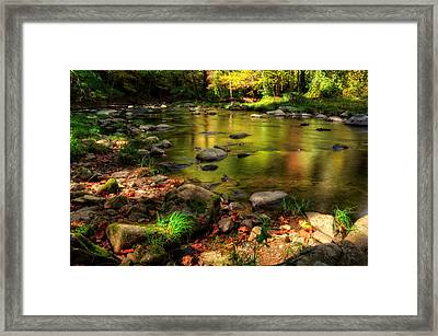 Trout Waters In Fall Framed Print