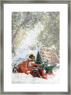 Truck Carrying Christmas Trees Framed Print