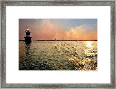 True Blue Framed Print by Diana Angstadt