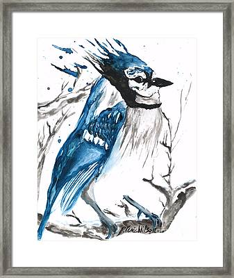 True Blue Jay Framed Print by D Renee Wilson