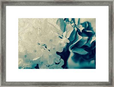 True Blue  Framed Print by Maibel  Ziello