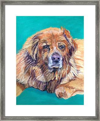 True Companion Framed Print