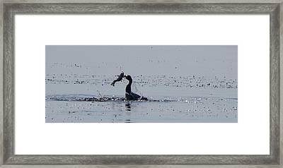 True Fisherman Framed Print