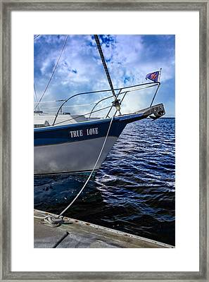 True Love Framed Print by Debra and Dave Vanderlaan
