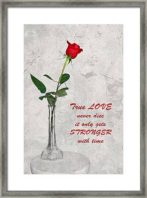 True Love Never Dies Framed Print