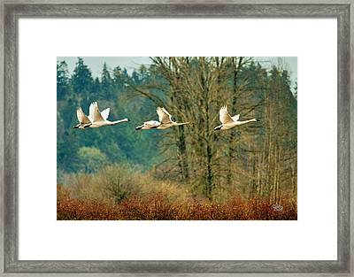 Trumpeters Five Framed Print