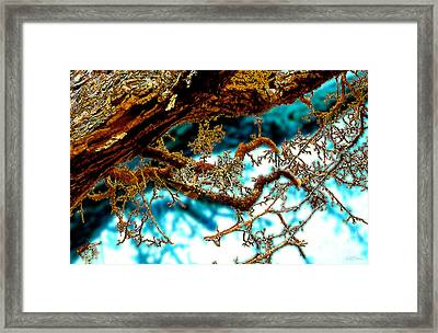 Framed Print featuring the digital art Truncated by Cristophers Dream Artistry