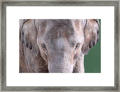 Framed Print featuring the photograph Truncated by Dyle   Warren