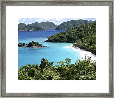 Framed Print featuring the photograph Trunk Bay II by Carol  Bradley