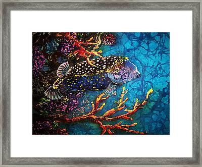 Trunkfish - Male Framed Print by Sue Duda