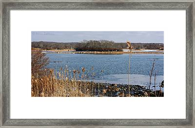Trustom Pond Framed Print by Anne Babineau