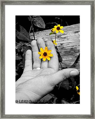 Try Seeing It In Color Framed Print