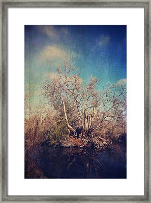 Trying To Survive Framed Print by Laurie Search